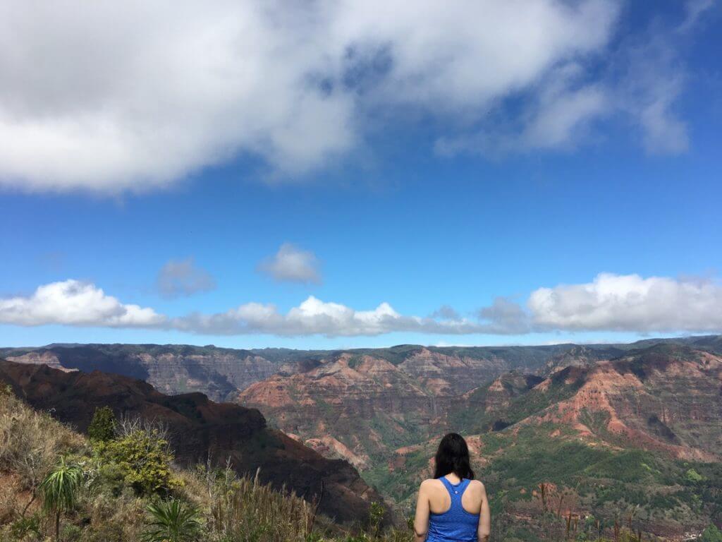 The Savvy Globetrotter in Kauai
